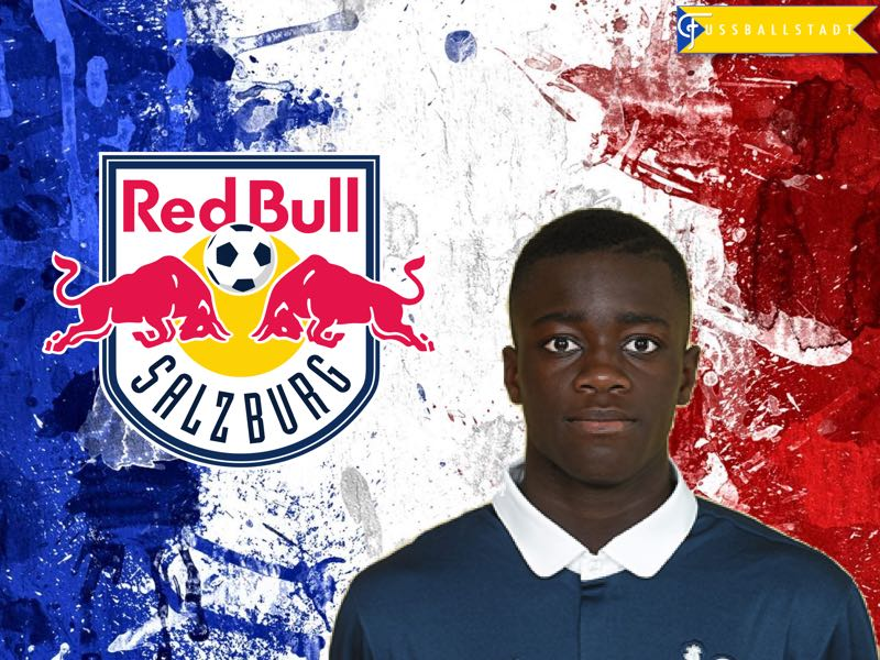Dayot Upamecano – A new prospect from Red Bull's stable